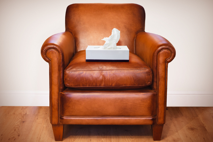 chair_tissue
